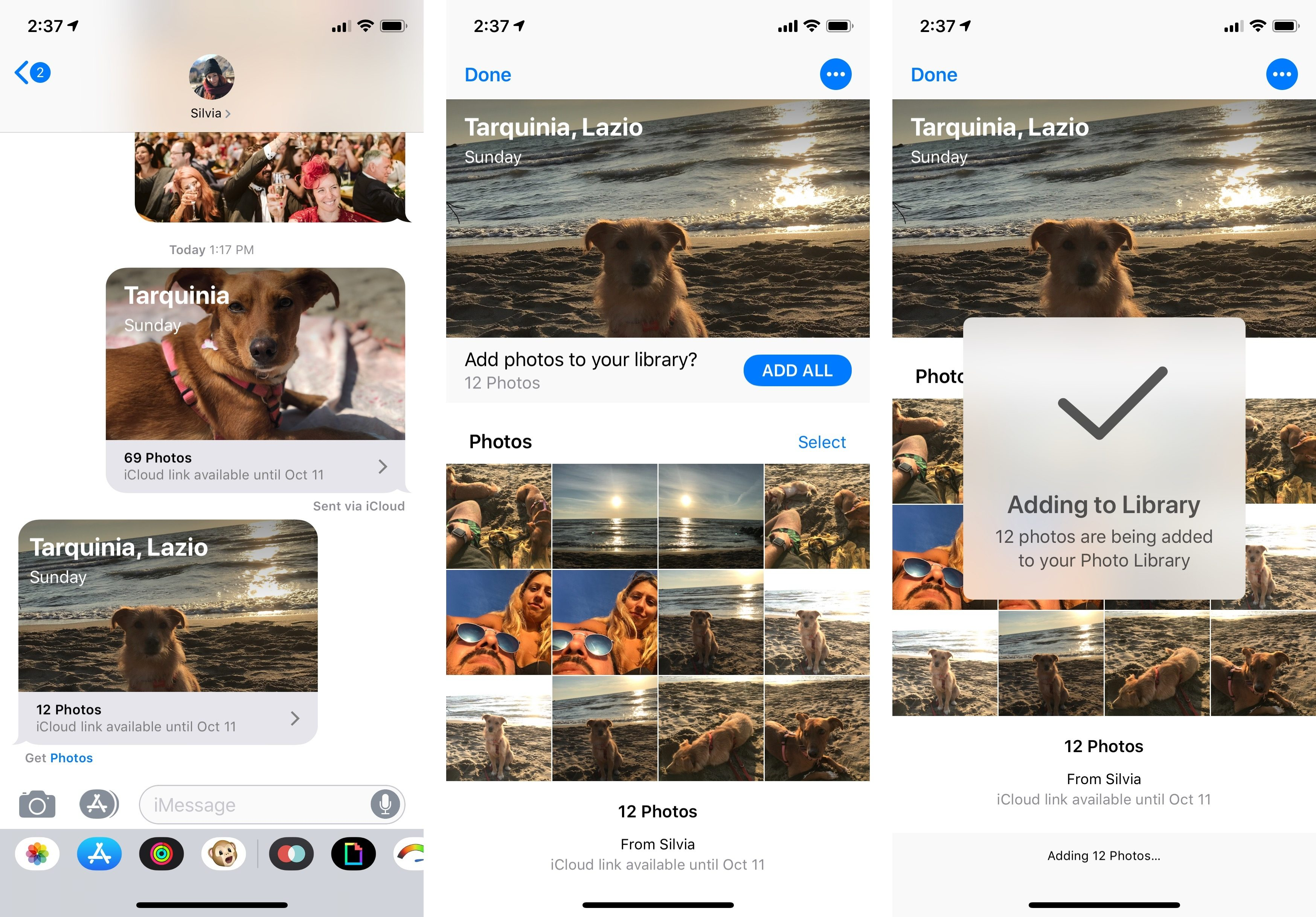 "Share Back works best with two people. In any case, Photos will not save items received from another person into the same ""album""."
